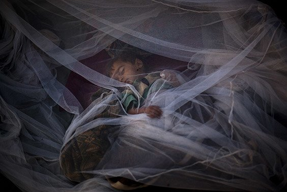 A Pakistani boy from Swat Valley sleeps under a mosquito net outside his tent at the Jalozai refugee camp, near Peshawar, Pakistan, Tuesday, May 26, 2009.