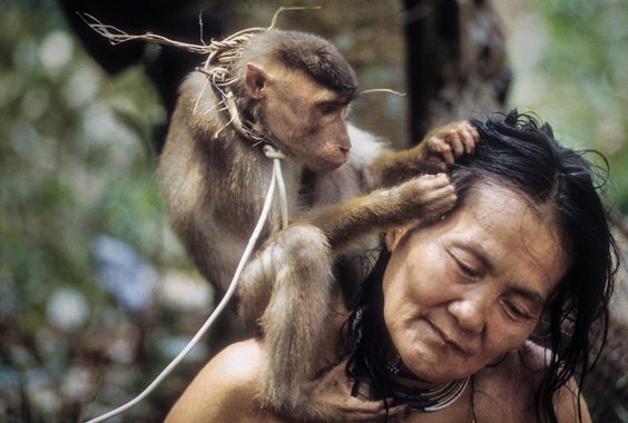David Hiser: Nomads of the Dawn: The Penan of the Borneo Rainforest
