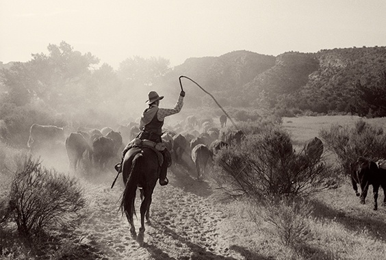 Kurt Markus: Memories and Cowboy Photographs